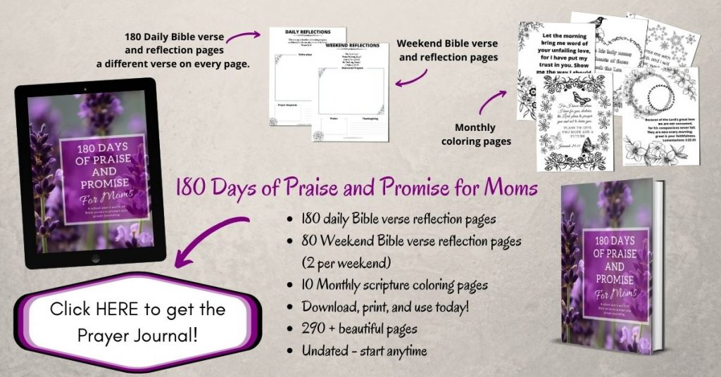 Prayer journal for moms - 180 days of praise and promise