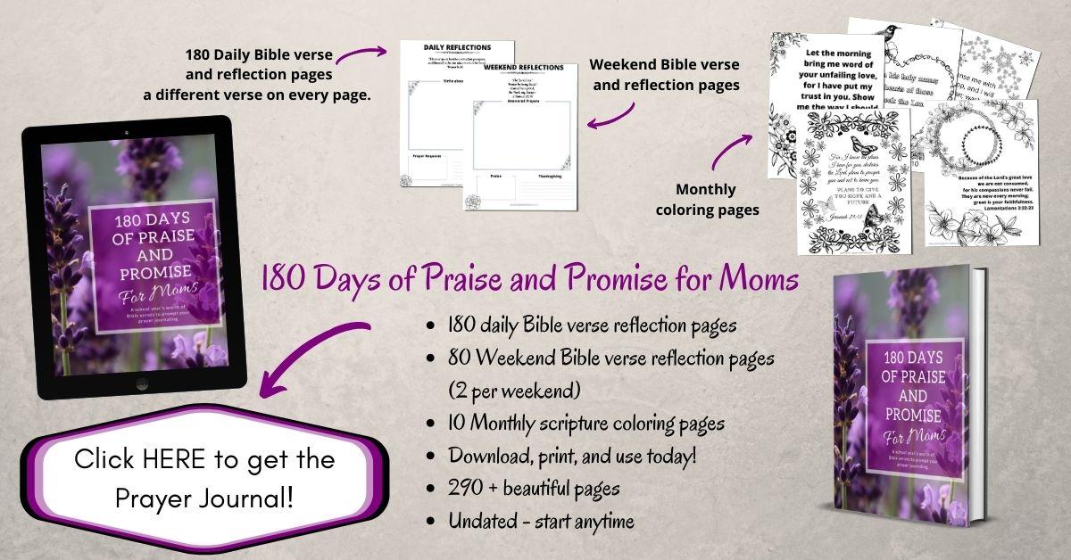Prayer journal for moms - 180 days of praise and promise