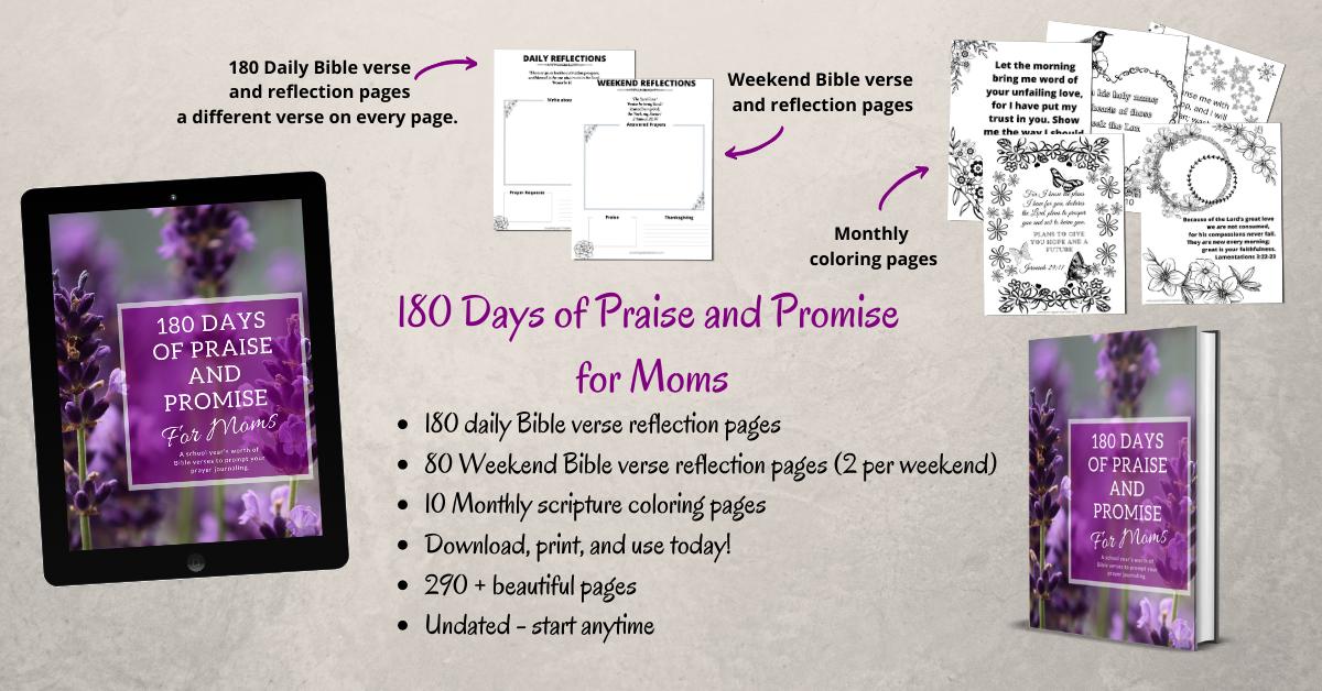 180 days of prais and promise prayer journal for moms