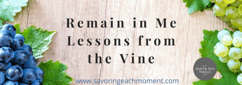 Bunch of Grapes - Remain in Me - Lessons from the Vine
