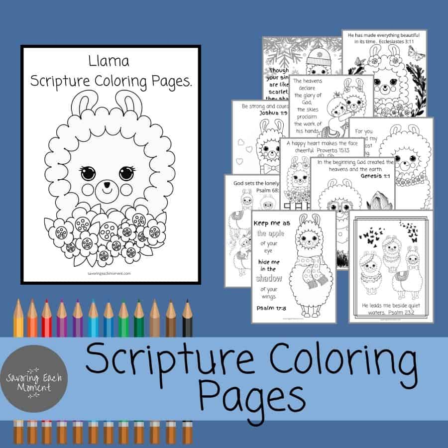 Scripture Coloring Pages - Llamas and Alpacas