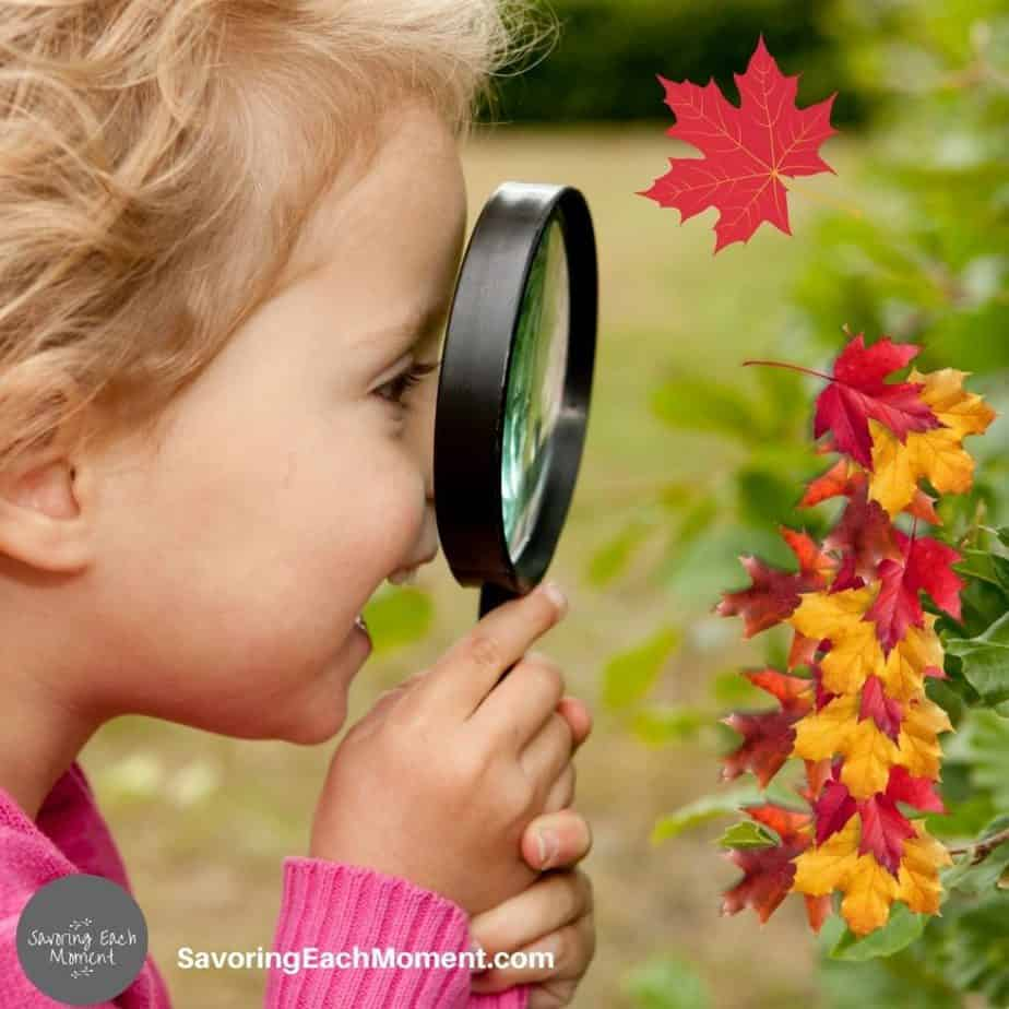 Preschooler looking through magnifying enjoying a fall science activity