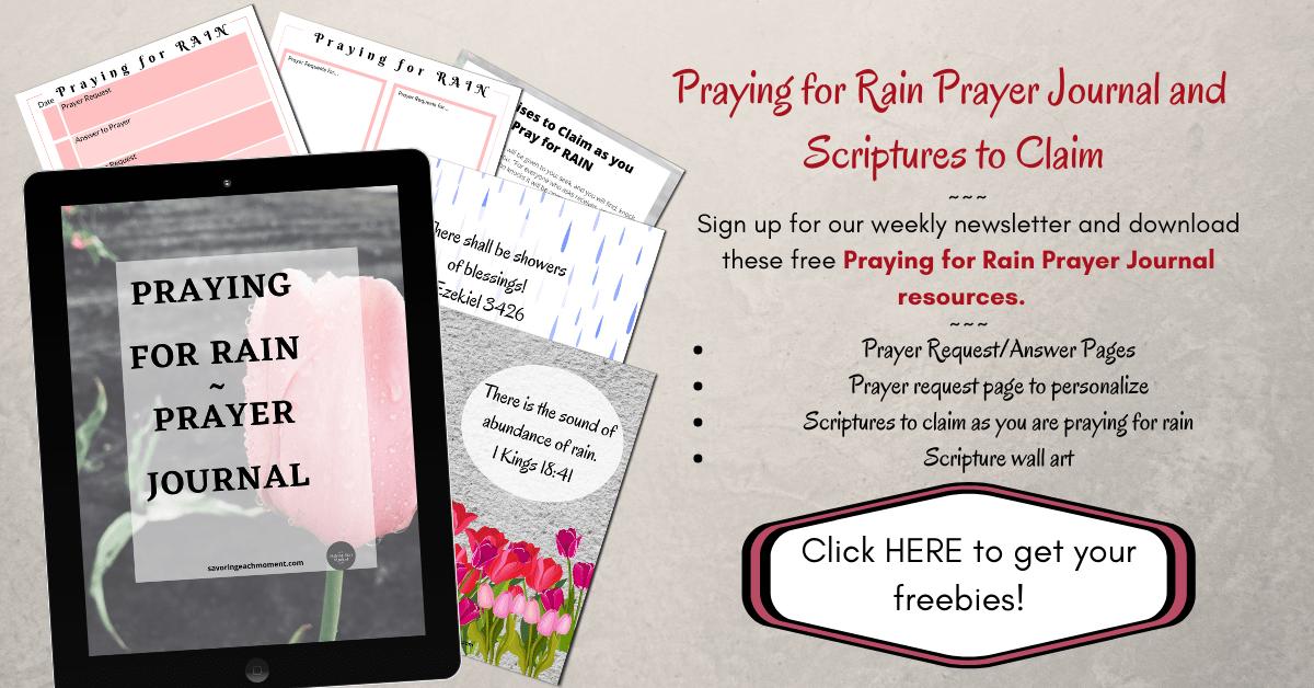 Praying for Rain Prayer Journal